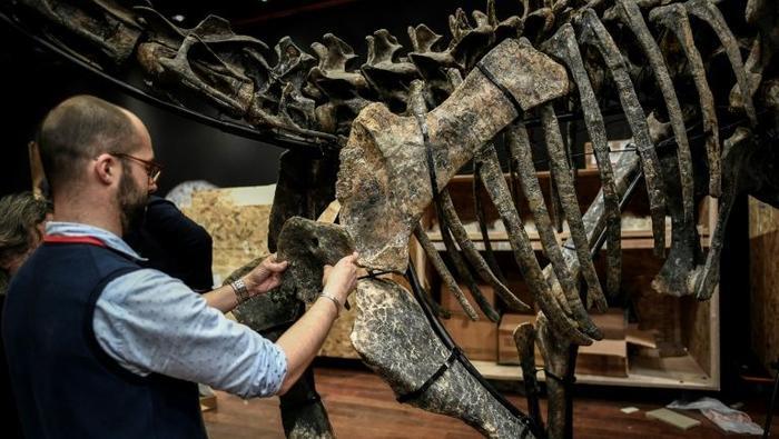 Zenginlerin yeni merakı 'satılık dinozor'