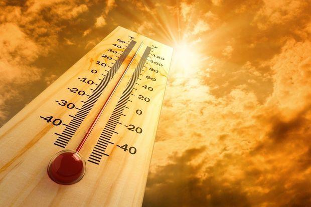 """Umayra Tağıyeva: """"Bu ay havanın temperaturu 17 gün normadan yüksək olub"""""""