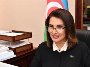 """""""Sosial şəbəkələrlə bağlı təklifi mən irəli sürməmişəm"""" – Deputat Jalə Əliyeva təkzib etdi"""