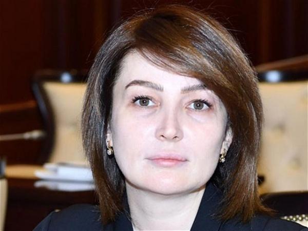 """""""Siyasətə qarışmayacaqsa, parlamentdə nə işi var?"""" – Deputatın qalmaqallı fikirlərinə reaksiyalar"""