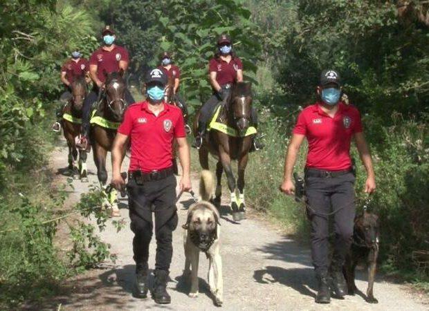 Türk polisi HƏRƏKƏTƏ KEÇDİ: meşələrə bu yolla nəzarət ediləcək