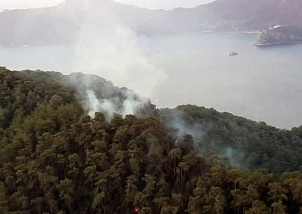 Türkiyə meşələrini indi də ildırım yandırır – 3 gündə 37 yanğın