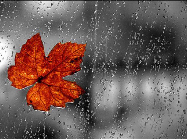 Yağış yağacaq, külək əsəcək – PROQNOZ