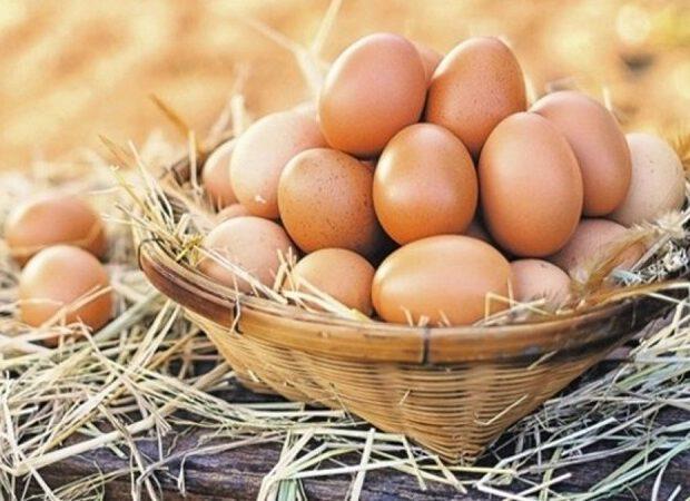 Yumurtanın qiyməti bahalaşdı