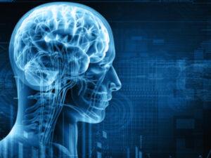 Üç min il əvvəl insan beyni niyə kiçildi? – ŞOK ARAŞDIRMA